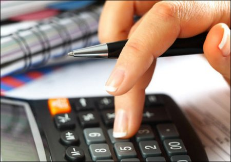 Налоговая может проверить, откуда тунеядец взял деньги на оплату сбора