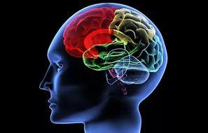Как интернет изменил мозг человека